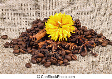 aromatic spices, coffee, for your design