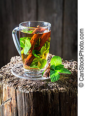 Aromatic tea with cinnamon bark and green leaves