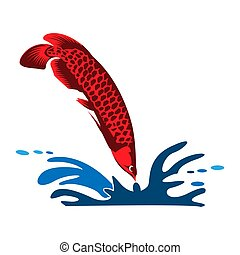 Arowana fish vector. Vector Illustration on white background