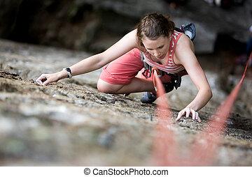 arrampicatore, femmina
