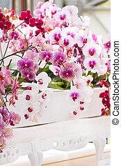Arrangement colorful moth orchids