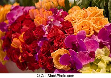 arrangement, de, roses, tulipes, et, assorti, fleurs