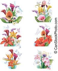 Arrangement from tropical flowers