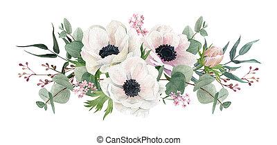 arrangement, illustration., anemones., aquarelle, dessiné, main, beau