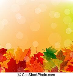 Arrangement Of Autumn Color Leaves, Vector Illustration