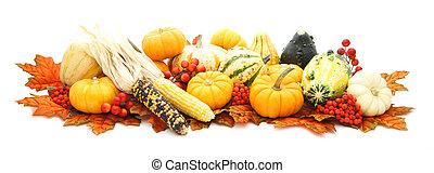 Arrangement of autumn vegetables - Arrangement of many...