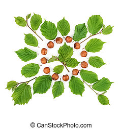 Arrangement of filbert nuts with leaves on white. Flat lay, top view.