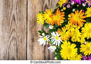 Arrangement of fresh flowers in a pot