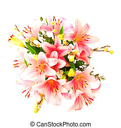 Arrangement of Lilys on a white background