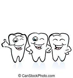 arrangement of the teeth, good conditions