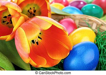 arrangement, paques, coloré