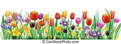 Arrangement with multicolor spring flowers over white ...