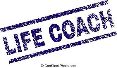 arranhado, vida, treinador, selo, textured, selo
