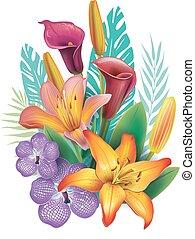 arranjo, de, flores tropicais