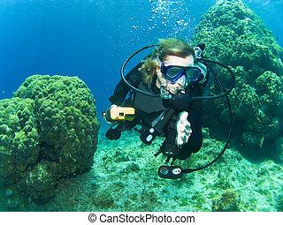arrecife, buzo, hembra, entre, escafandra autónoma, natación