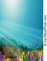 arrecife, naturaleza, coral, escena, mar, debajo
