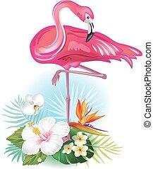 arreglo, de, flores tropicales, y, flamenco