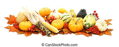 arreglo, de, otoño, vegetales