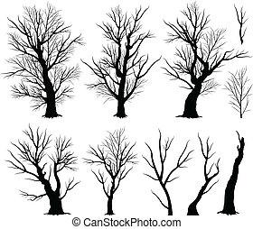 arrepiado, árvore