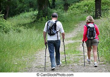 arrière affichage, de, couples aînés, randonnée, dans, forêt, chemin