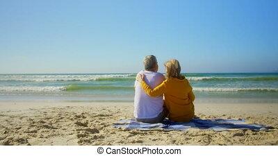 arrière, plage, caucasien, vue, délassant, actif, 4k,...