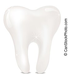 arrière-plan., blanc, isolé, dent