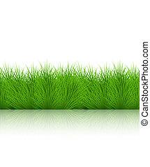 arrière-plan., blanc, vecteur, eps10, herbe
