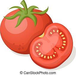arrière-plan., blanc, vecteur, tomates, illustration