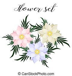 arrière-plan., fleurs blanches, ensemble