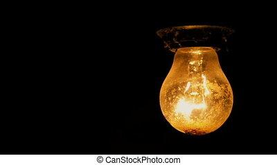 arrière-plan noir, ampoule, lumière, électrique