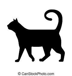 arrière-plan noir, chat, blanc, silhouette