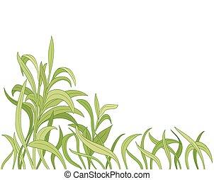 arrière-plan., vecteur, herbe, dessin animé