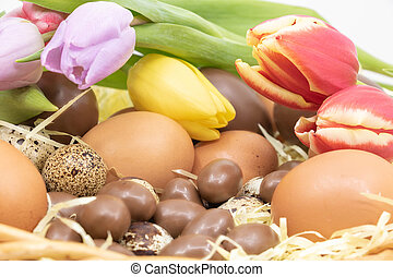 arrivée, printemps, paques, tulipes