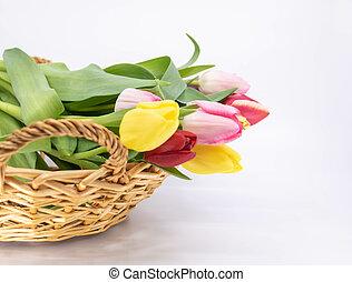 arrivée, ressource, graphique, bouquet, printemps, tulipes