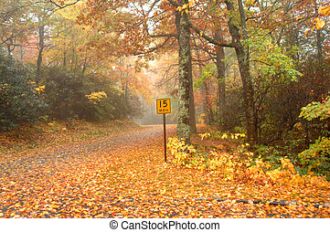 Arrival of Fall on Blue Ridge - Autumn colors this narrow...