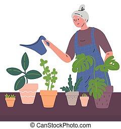 arrosage, femme, mûrir, houseplants