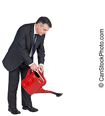 arrosage, mûrir, boîte, homme affaires, rouges