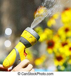 arroser fleurs