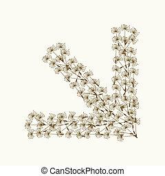 Arrow a dandelion