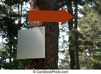 Arrow and sign on tree in forest.