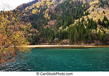 Arrow Bamboo Lake in Jiuzhaigou