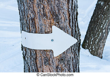 arrow for skiers in the forest