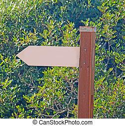 arrow in the park