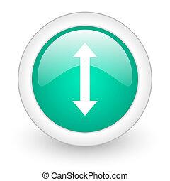 arrow round glossy web icon on white background