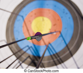 Arrow tail - Bunch of arrows in the target with focus on one...