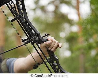 arrowhead., caza, concept., foco, bow., arco, objetivos, ...