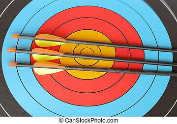 arrows focus to archery target