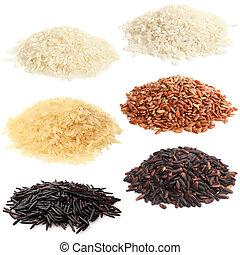 arroz, selección, vario
