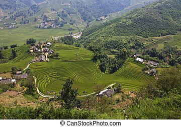 arrozal, campos, y, pequeño, aldeas, en, montañas, de,...