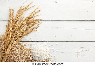 arrozal, y, arroz
